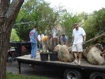 BACD Tree Planting